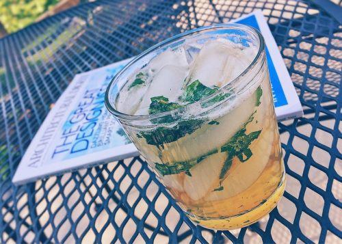 mint julep beverage cocktail