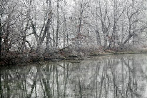 mirroring water reflection winter