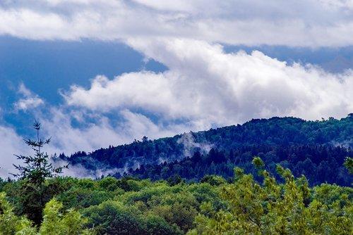 mist  fog  clouds