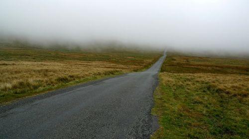 mist road fog