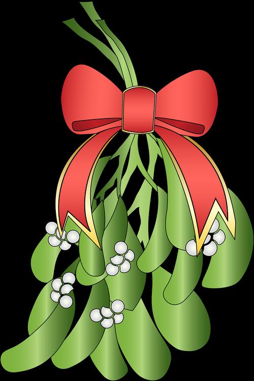 mistletoe  plant christmas  plant