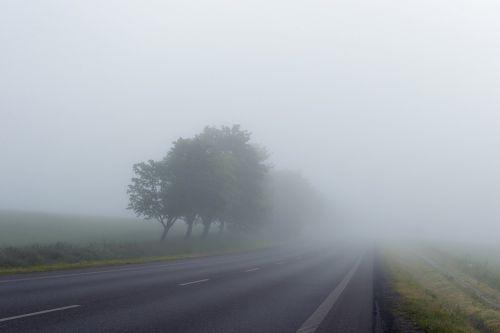 misty road fog