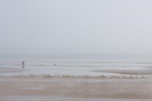 Misty Beach Walk