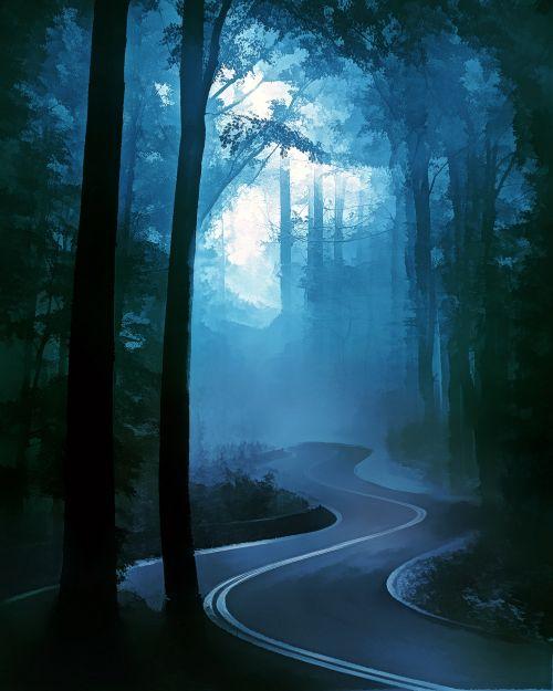 rytas, migla, miškas, gamta, tamsi, rūkas, medžiai, miglotas rytas 7