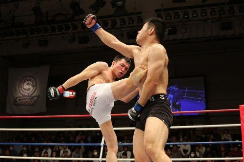 mixed martial arts sport kick