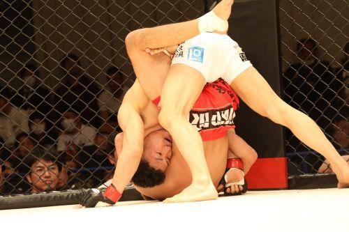 mixed martial arts sport shooto