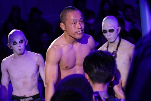 mixed mixed martial arts mma