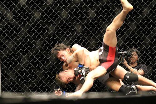 mma mixed martial arts maza fight