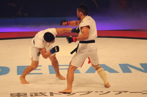 mma martial arts ganryujima