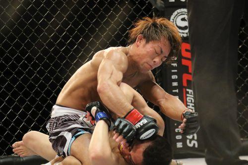 mma mixed martial arts japan