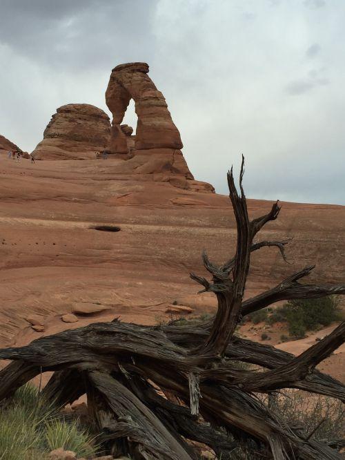 moab landscape outdoors