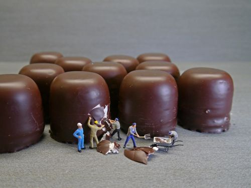 mohr heads chocolate marshmallow workers