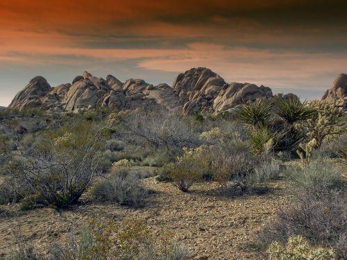 mojave,dykuma,Kalifornija,akmenys,rieduliai,granitas,krūmai,šepetys,vaizdingas,gamta,lauke,Nuotolinis,dykuma