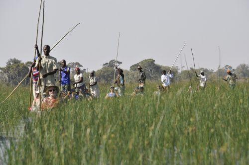 mokoro botswana okavango