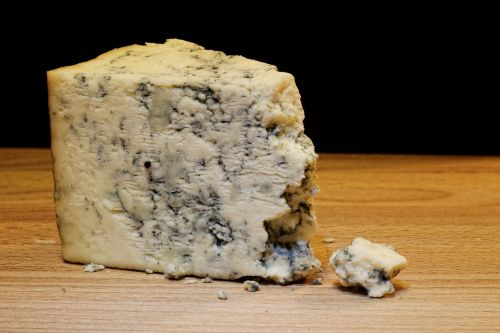 mold cheese food dairy