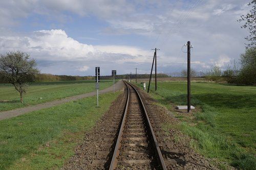 molli  railway line  grass
