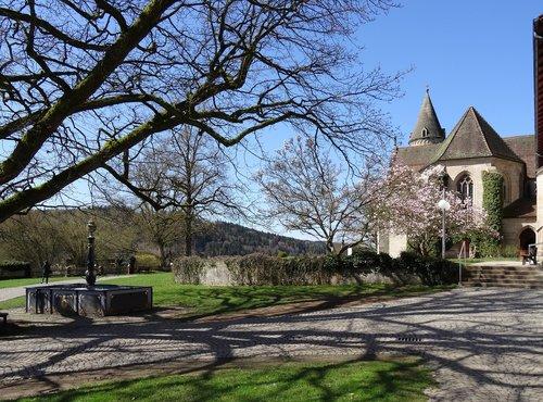 monastery garden  luther oak  monastery