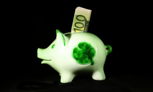 money save sparscwein