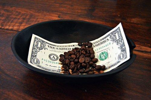 money  dollar  shell