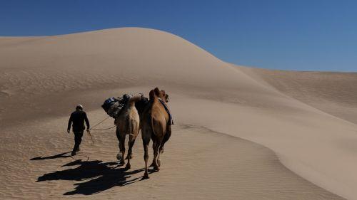 mongolia nomad dune
