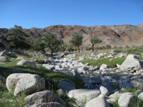 mongolia torrent steppe