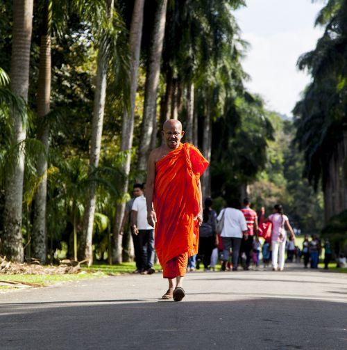 monk buddhist asia