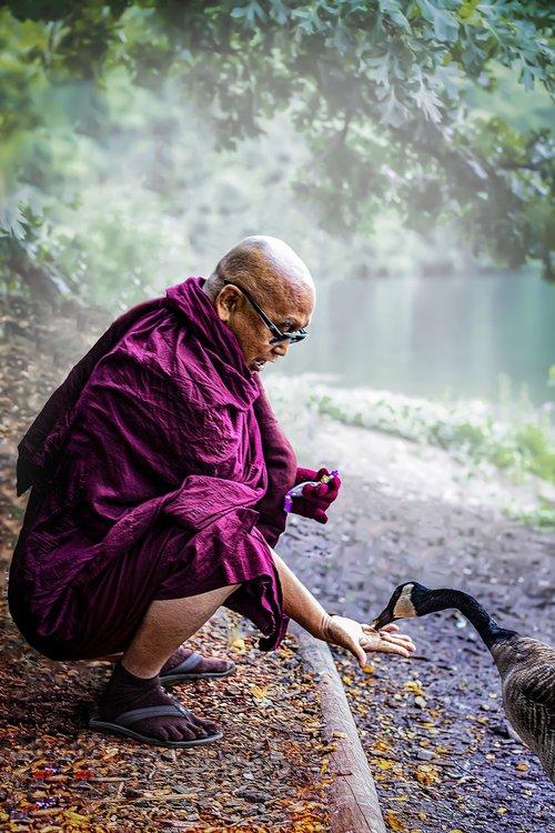monk  theravada buddhism  bhikkhu