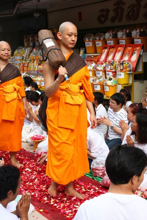 monk buddhists monk walk