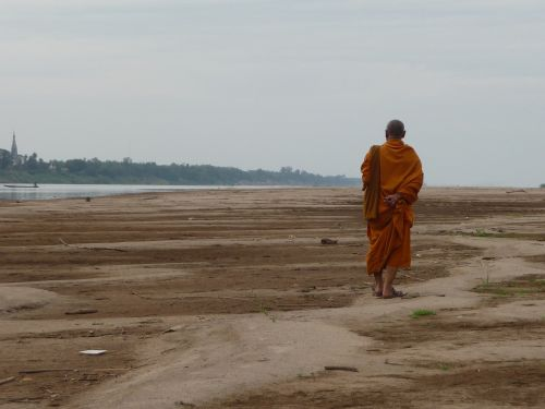 monk buddhism religious