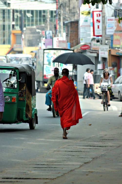 monk,sri lanka,buddha,culture,travel,asia,ceylon,orange,robe,street,exotic,destinations,city,colorful,tradition,east,people,umbrella,silhouette,belief,walking,free photos,free images,royalty free
