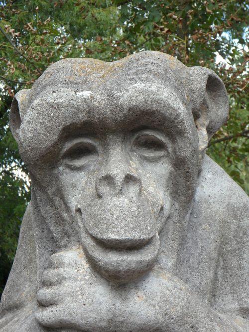 monkey stone stony