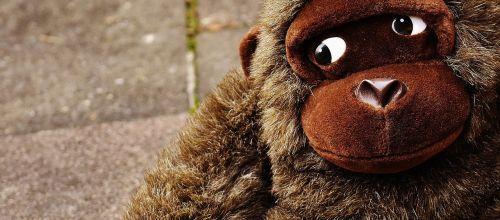 beždžionė,gorila,žaislai,iškamša,minkštas žaislas,mielas,saldus