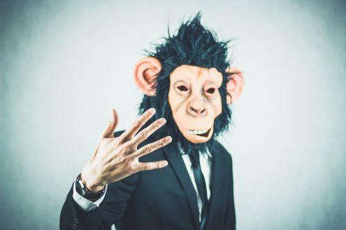 monkey application training