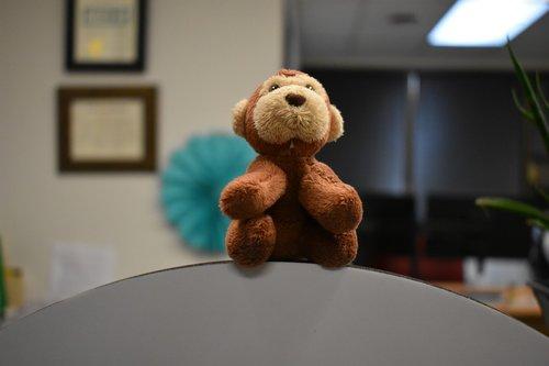 monkey  stuffed animal  adorable