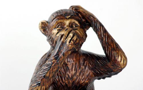 monkey do not speak symbol