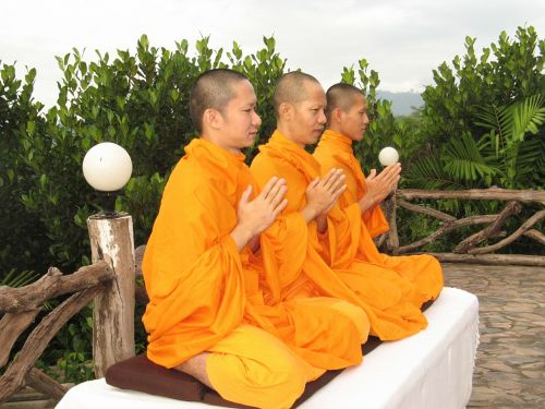 monks buddhists pray