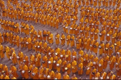 monks buddhists crowd