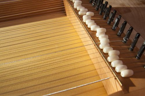 monochord canon musical instrument