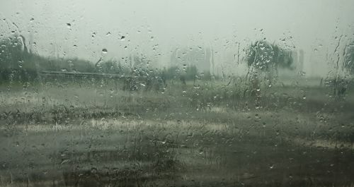monsoon raindrops rain