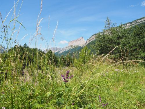 mont aiguille mountain massif