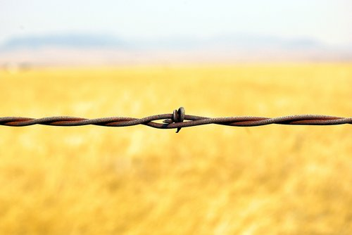 montana barbed wire  barbed  wire