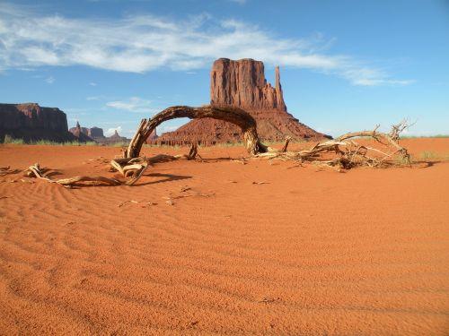 paminklo slėnis,dykuma,bagažinė