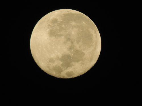 moon full luna