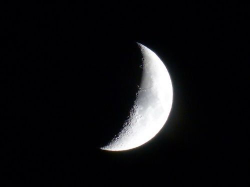moon crescent sickle