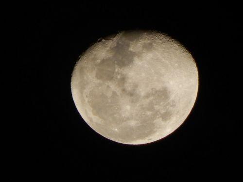 moon room crescent