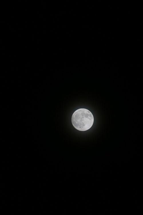 moon dark moonlight