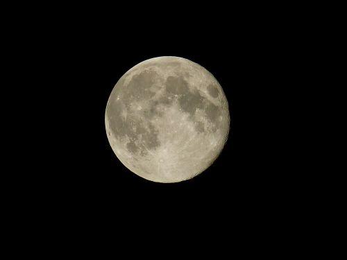 moon night moonlight