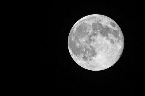 moon night white moon