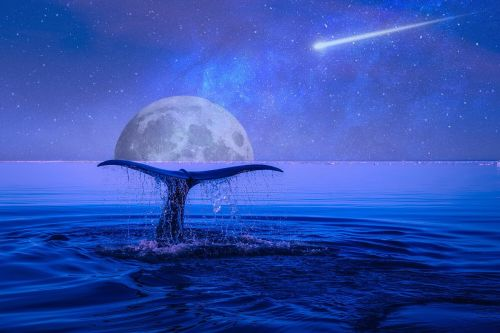 moon stars shooting star