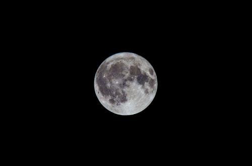 moon night full moon